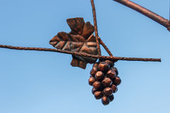Wiązka winogrona brąz na nieba tle Fotografia Stock