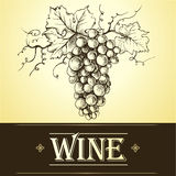 Wiązka winogrona dla etykietek wino Fotografia Royalty Free