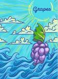 Wiązka winogrona unosi się na fala również zwrócić corel ilustracji wektora royalty ilustracja