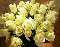 Wiązka zielonawe białe róże Fotografia Royalty Free