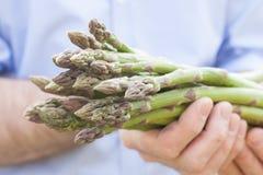 Wiązka zielony asparagus w ogrodniczek rękach zamyka up zdjęcie royalty free
