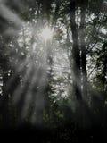 wiązki światła Zdjęcia Stock