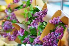 Wiązki świeży bez na kwiatu rynku Fotografia Stock