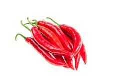 wiązki chilies świeża czerwień Obrazy Royalty Free