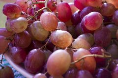 Wiązki czerwonych winogron zamknięty up obrazy royalty free