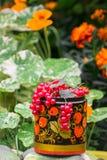 Wiązki dojrzały czerwony rodzynek w dekoracyjnym drewnianym garnku, malować w Khokhloma stylu fotografia royalty free