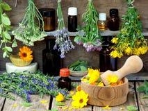 Wiązki leczniczy ziele mennica, krwawnik, lawenda, koniczyna, hizop, milfoil, moździerz z kwiatami calendula i butelki -, Obraz Stock