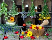 Wiązki leczniczy ziele mennica, krwawnik, lawenda, koniczyna, hizop, milfoil, moździerz z kwiatami calendula i butelki -, Zdjęcia Stock