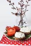 wiązki serowy przekąski pomidor Zdjęcie Royalty Free