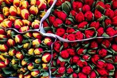 Wiązki tulipany na pokazie dla sprzedaży w ulicznym rynku Zdjęcia Stock