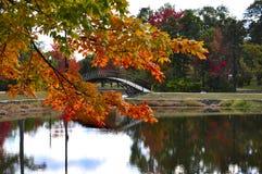 Wiązu park, Worcester fotografia stock