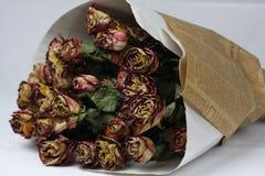 więdnąca bukiet róża Zdjęcie Stock