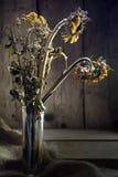 Więdnący bukiet z złotym słonecznikiem i tansy na nieociosanym drewnie Obrazy Stock