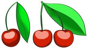 wiśni owoc ilustracyjny czerwony set Zdjęcia Royalty Free