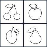 Wiśnia, Apple, śliwka, bonkreta Obraz Royalty Free