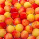 Wiśnia w pucharze Świeża żółta wiśnia Wiśnia na białym drewnianym tle Pojęcie zdrowa dieta Fotografia Stock