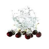 Wiśnie bryzgają na wodzie, odosobnionej na białym tle Zdjęcia Royalty Free