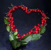 Wiśnie które kłaść w postaci serca, piękny romantyczny obraz royalty free