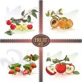 Wiśnie, morele, truskawki i jabłka, royalty ilustracja