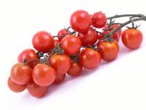 wiśnie pomidorów zdjęcia royalty free