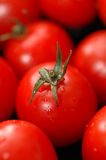 wiśnie pomidorów zdjęcia stock