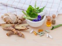 WI de fines herbes de soins de santé alternatifs, secs et de fines herbes frais de capsule Photo libre de droits