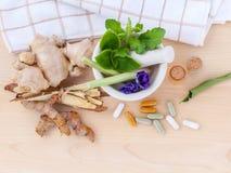 WI de fines herbes de soins de santé alternatifs, secs et de fines herbes frais de capsule Photographie stock