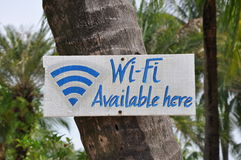Wi-fi available here sign. Posted in coconut tree trunk Royalty Free Stock Images