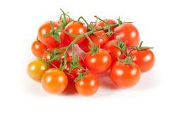 wiśni odosobniony organicznie pomidorów winogradu biel Zdjęcie Stock