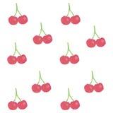 Wiśnie, akwarela Zdjęcia Stock