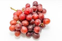 wiązek czerwonych winogron Zdjęcia Stock