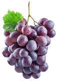 wiązek czerwonych winogron Obrazy Stock