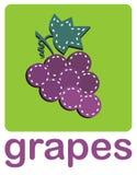 wiązek winogrona ilustracja wektor