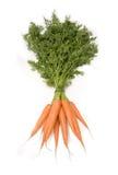 wiązek zielonych marchewek Obraz Royalty Free