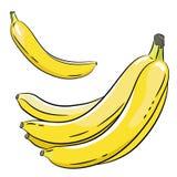 Wiązka banany i banan Zdjęcia Royalty Free