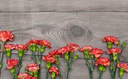 Wiązka czerwieni i menchii cloves kwitnie na nieociosanym drewnianym stole Fotografia Royalty Free