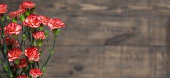 Wiązka czerwieni i menchii cloves kwitnie na nieociosanym drewnianym stole Obraz Stock