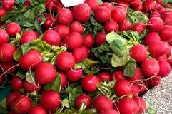 Wiązka czerwona borówka na stole w rynku Zdjęcia Royalty Free
