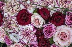 Wiązka kwiaty w czerwieni i menchiach Zdjęcia Royalty Free