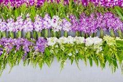 Wiązka lokalna tajlandzka orchidea przy kwiatu rynkiem dla Buddha orchidei b Obrazy Stock