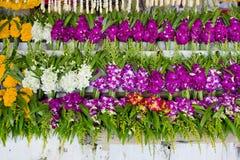 Wiązka lokalna tajlandzka orchidea przy kwiatu rynkiem dla Buddha storczykowy b Zdjęcie Stock