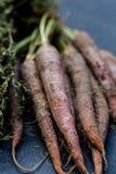 Wiązka purpurowa marchewka Zdjęcia Stock