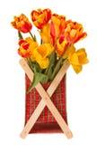 Wiązka tulipany Zdjęcie Stock