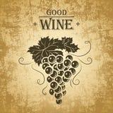 Wiązka winogrona dla etykietek wino Obrazy Stock