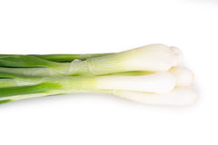 Wiązka Zielone cebule Obrazy Stock