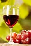 wiązki szklany winogron wino Zdjęcie Royalty Free