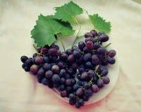 Wiązki winogrona Obrazy Royalty Free