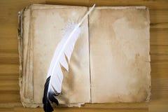 wiadomość piórkowa stara księgowa Zdjęcia Royalty Free