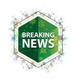 Wiadomości Dnich rośliien wzoru zieleni sześciokąta kwiecisty guzik royalty ilustracja