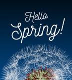 Wiadomości tekstowej wiosna przeciw tłu wiosna krajobraz z dandelion zakończeniem cześć, royalty ilustracja